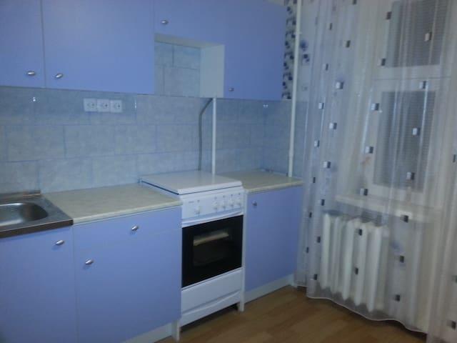 Уютная квартира на Запсковье - Pskov