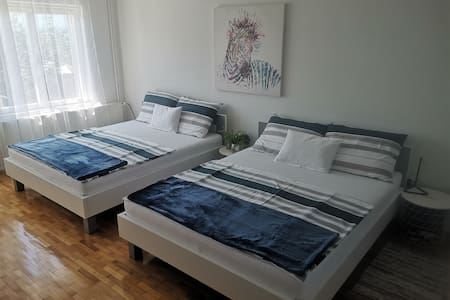 Apartment Kolar A1 City center Zabok, (A2-3 km)
