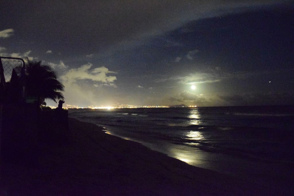Moonlight over the beach