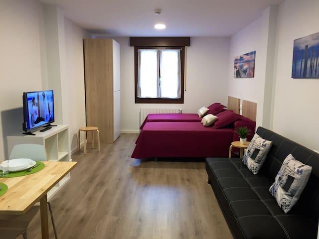 APARTAMENTOS JURRAMENDI-LOS ARCOS 2 y 4 - Los Arcos - Apartment