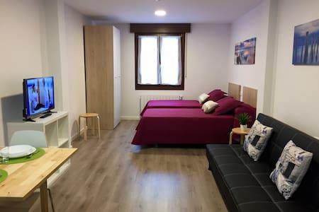 APARTAMENTOS JURRAMENDI-LOS ARCOS - Apartament