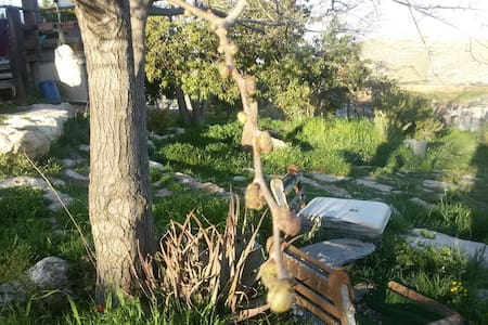 Inbalim camping site - מעלה מכמש - Tenda
