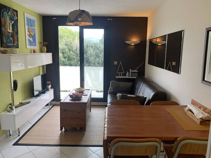APARTMENT FRONT OF SEA IN DOMAINE WITH SWIMMING PO
