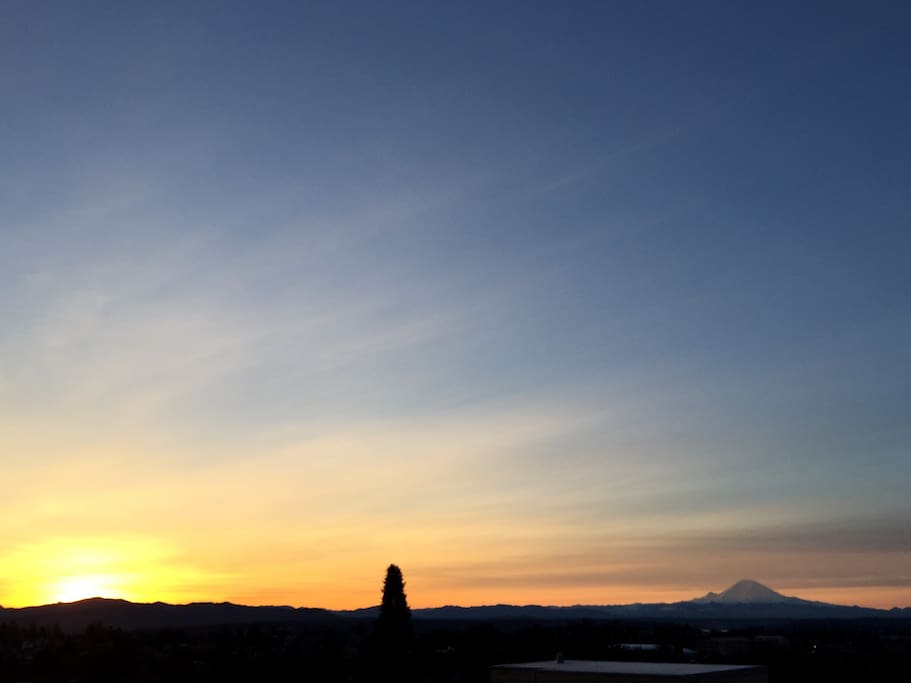 View of mt rainier from roof deck