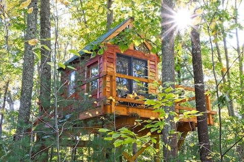 Tiny Tree Cabin camping