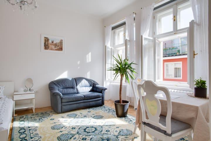 3 BDR Big Apartment in CENTER of PRAGUE