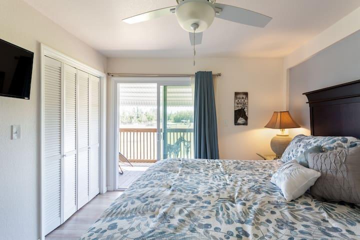 Master bedroom -walk-in closet and flat screen TV