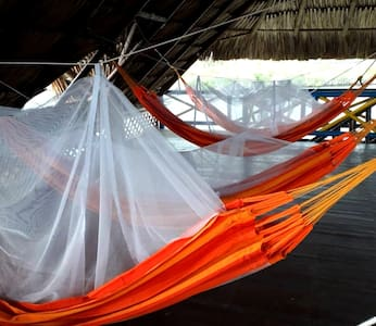Hammocks at ISLA ROOTS HOSTEL