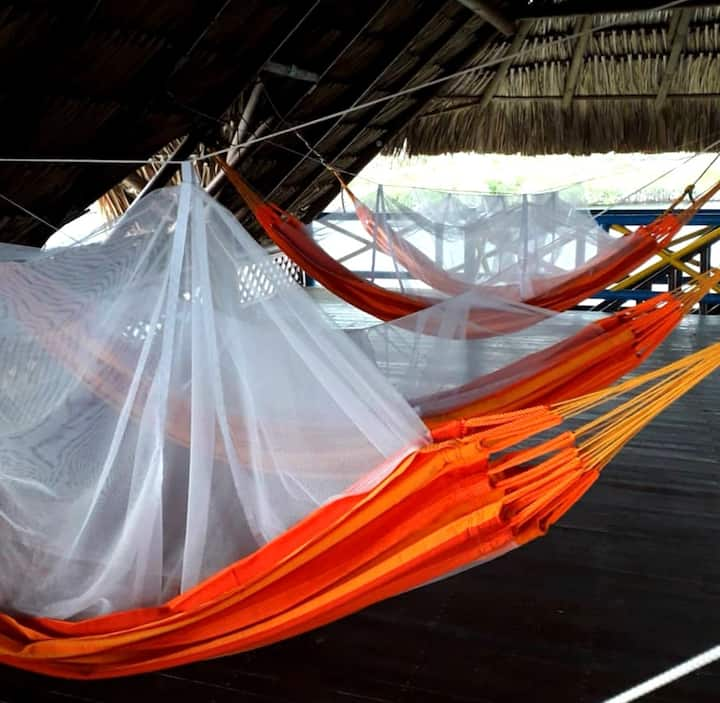 Hammocks at ISLA ROOTS - OPEN AIR SHARED DORM