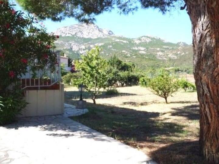 Villa à Calvi, proche de la mer