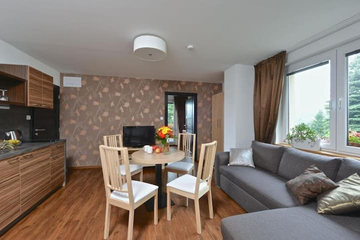 Two-bedroom apartment 294/2 Breakfast included