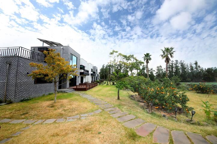 꿈에그려보던 집 80평형 대저택+ 잔디마당+ 귤밭. 하루에 딱 한팀. 저렴한가격