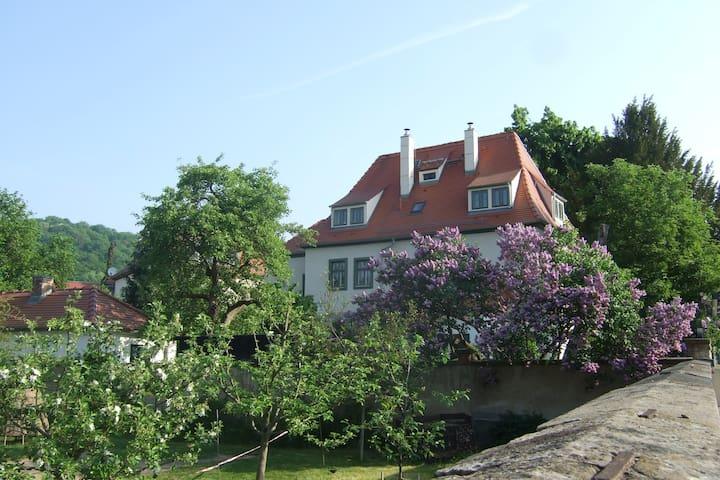 Stilvoll und komfortabel - historisches Kyauhaus - Radebeul - Daire