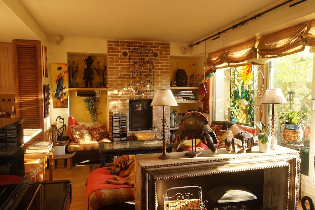 bel appartement duplex lumineux 3 terrasses sauna appartements louer paris le de france. Black Bedroom Furniture Sets. Home Design Ideas
