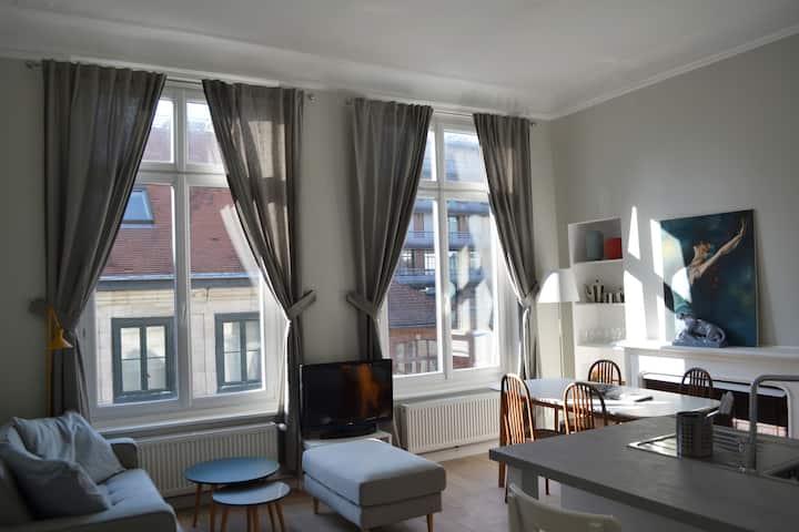 Vieux-Lille T3 65 m2 charme confort parking