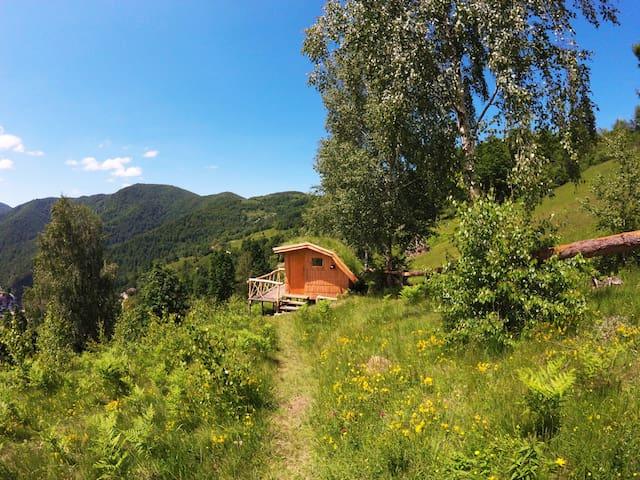 Boletus eco-cabins