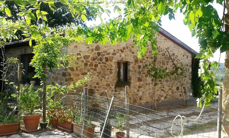 La Casetta In a quiet location in the countryside - Castiglione della Pescaia - Ev