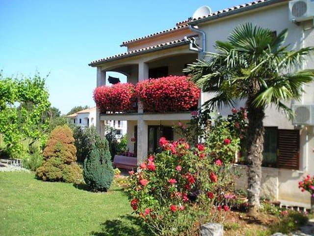 Appartement 4 pers en Croatie(Porec)