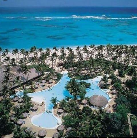 Paraiso tropical, 4-11 agosto, 4 personas
