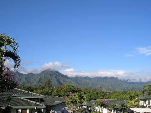 Beautiful Luxury  AirConditioned Apartment, Kauai
