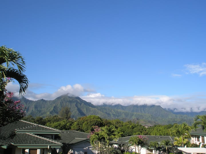 Beautiful Luxury  AirConditioned Apartment, Kauai