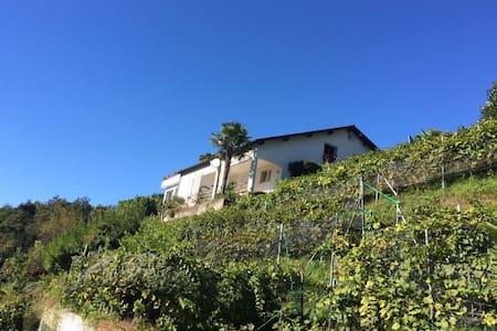 Tolle Wohnung mit wunderschönem Pool - Monteggio - อพาร์ทเมนท์