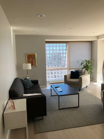 Rare luxurious apt in the heart of SF FiDi