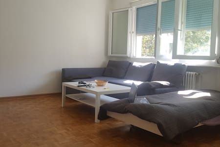 Amazing studio next to Geneva Lake & train station - Женева