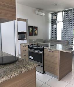 Pretty modern house  in Caguas PR.