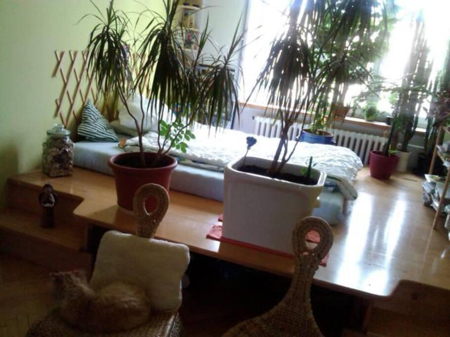 obývak + stupínek s ložnicí