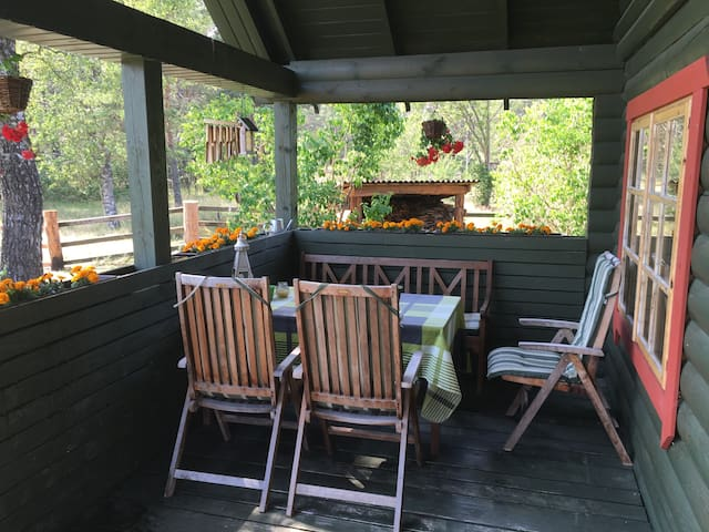 Holiday house Kāpas - explore Kurland - Melnsils - Dům