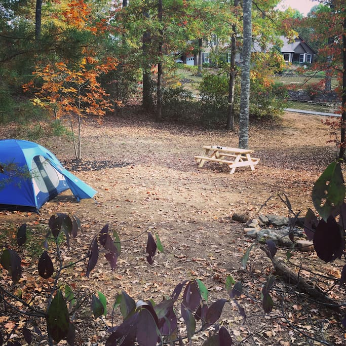 The main site has room for 3-4 tents and 3-4 hammocks.