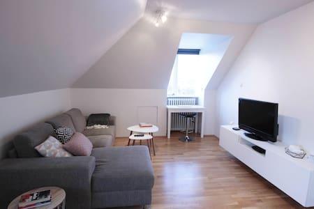 Bright & cosy apartment near central Reykjavík - Рейкьявик