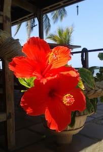 Casa en la playa privada, El Frances Tolu, sucre. - Tolú