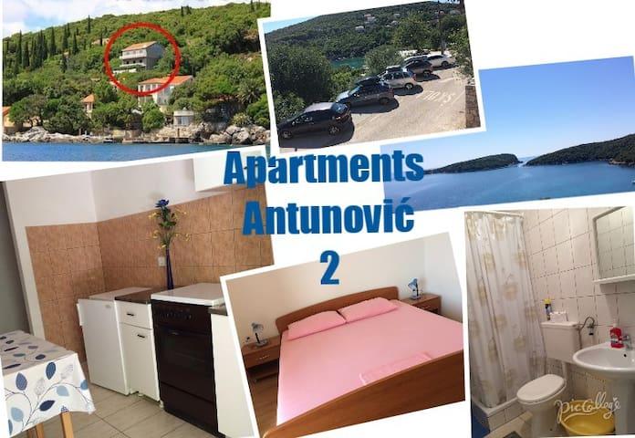 Cozy apartment for 5 in Molunat