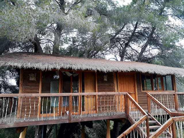 Family Treehouse in Greece adventure for everyone.
