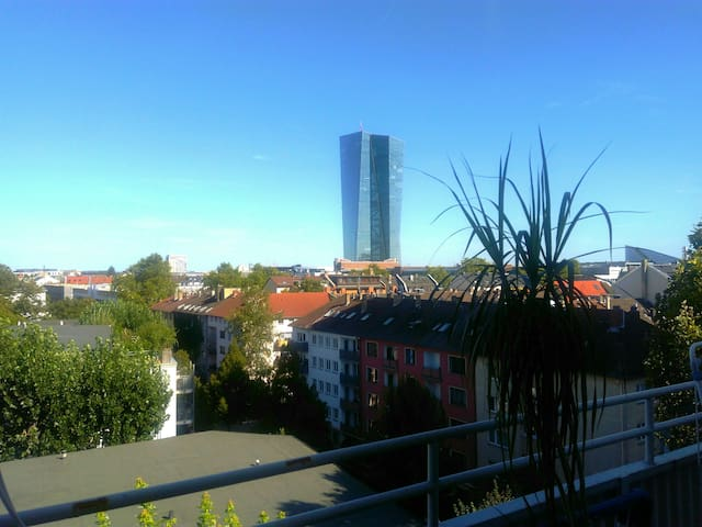 New Apartm at the river &European Centralbank view