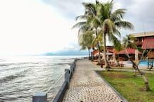 Palms Walkway