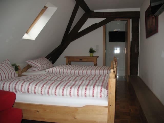 DG-Zimmer 3 im alten Fachwerkhaus - Bodenheim - Casa