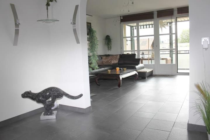 BIG & CHARMING LUXURY APPARTEMENT 5 MIN. TO BASEL - Allschwil - อพาร์ทเมนท์