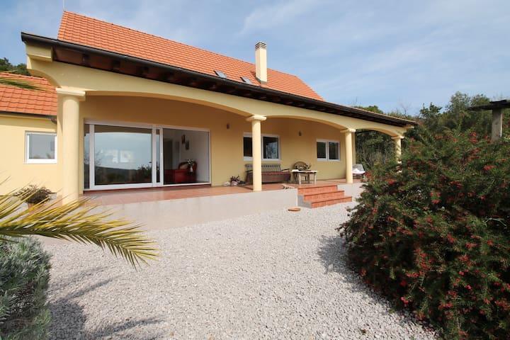 Family Villa in village Kovaci