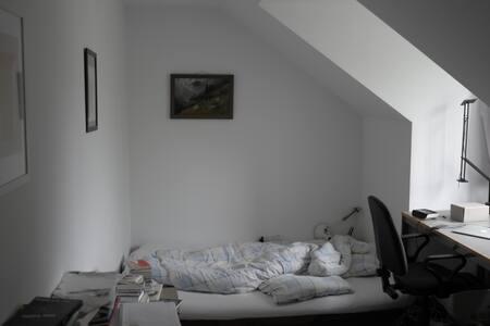Schönes Studentenzimmer in Giesing - Appartement