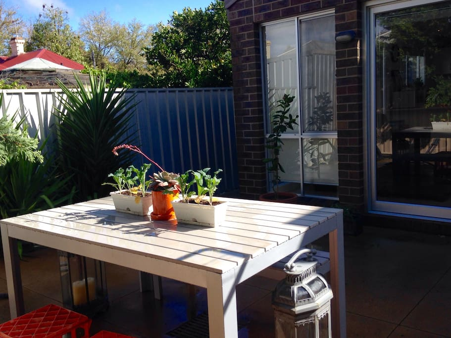 Outdoor area. Great space for brekky...or to hang the washing!