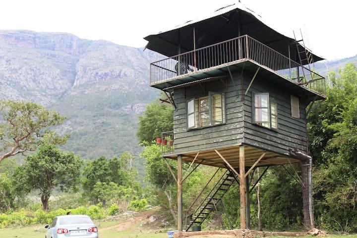 Machaan (Watchtower) - Masinagudi - Bed & Breakfast