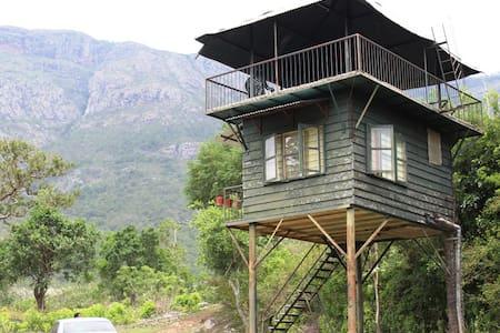 Machaan (Watchtower) - Masinagudi