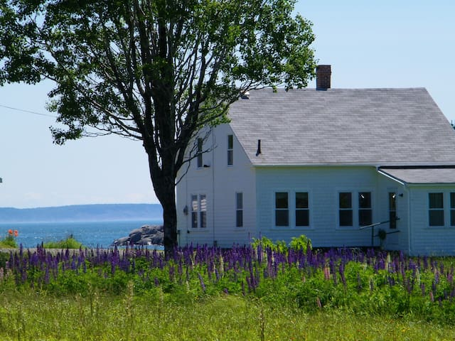 Boot Cove Cottage on the Down East Coast of Maine - Lubec - Holiday home