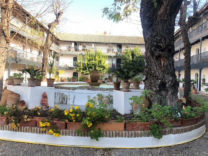 Apartamento en el centro de Sevilla espectacular