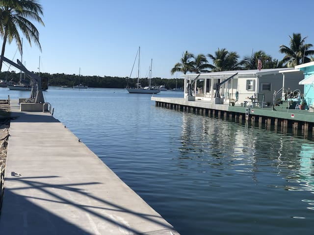 View from your dock