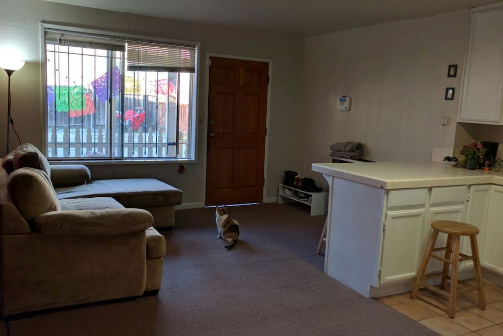 Nice Private Room Between Oakland And Berkeley Houses For Rent In Oakland California United
