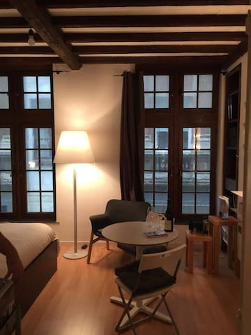 Cozy flat in the heart of Brussels
